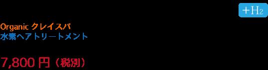 specialspamenu02